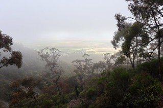 Mt Remarkable