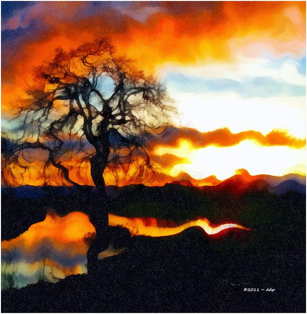 Sunset, Bundy Tree Pond & Reflections, Surreal for Sliders Sunday and Other Groups