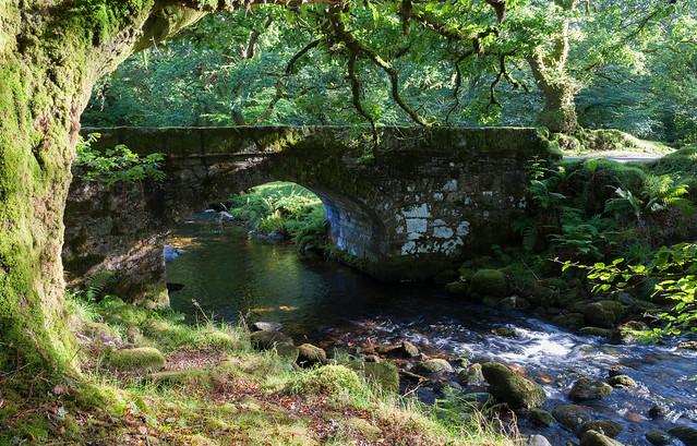 Norsworthy Bridge - Dartmoor_NK2_8280