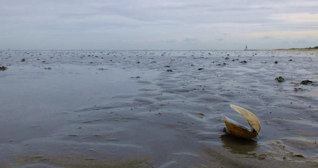Cuxhaven - Wadden Sea