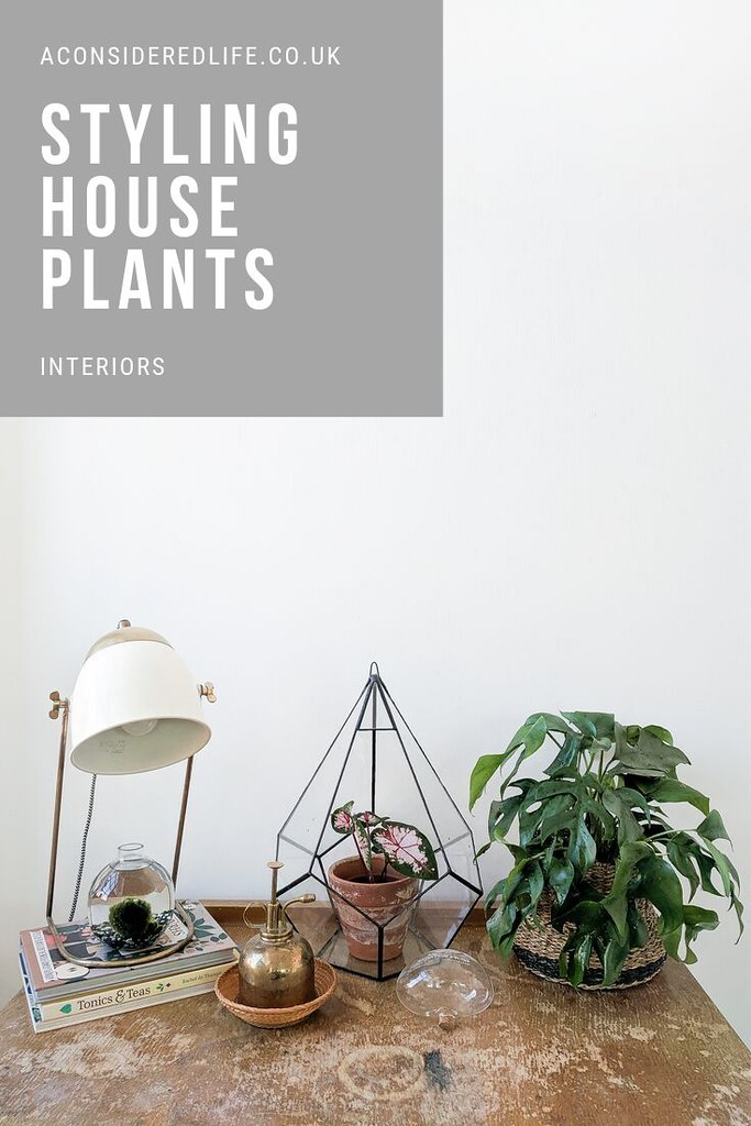 Decorating With House Plants