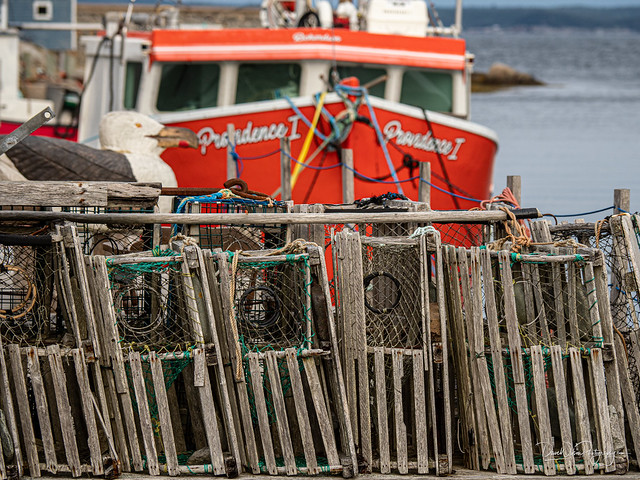 Lobster Pots at Peggy's Cove