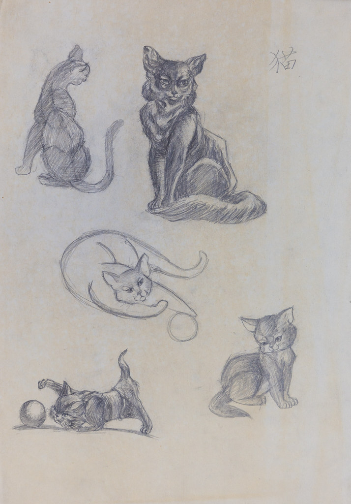 Sketches by Mei - Cats
