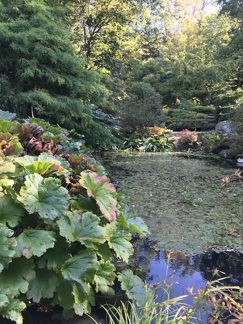 Botanical garden in Gothenburg