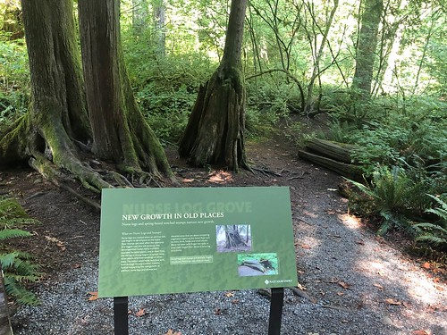 trail signage. From 5 Surprising Reasons to Visit Washington's Snoqualmie Falls
