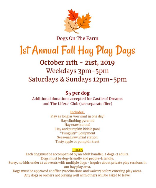 Hay Play Days
