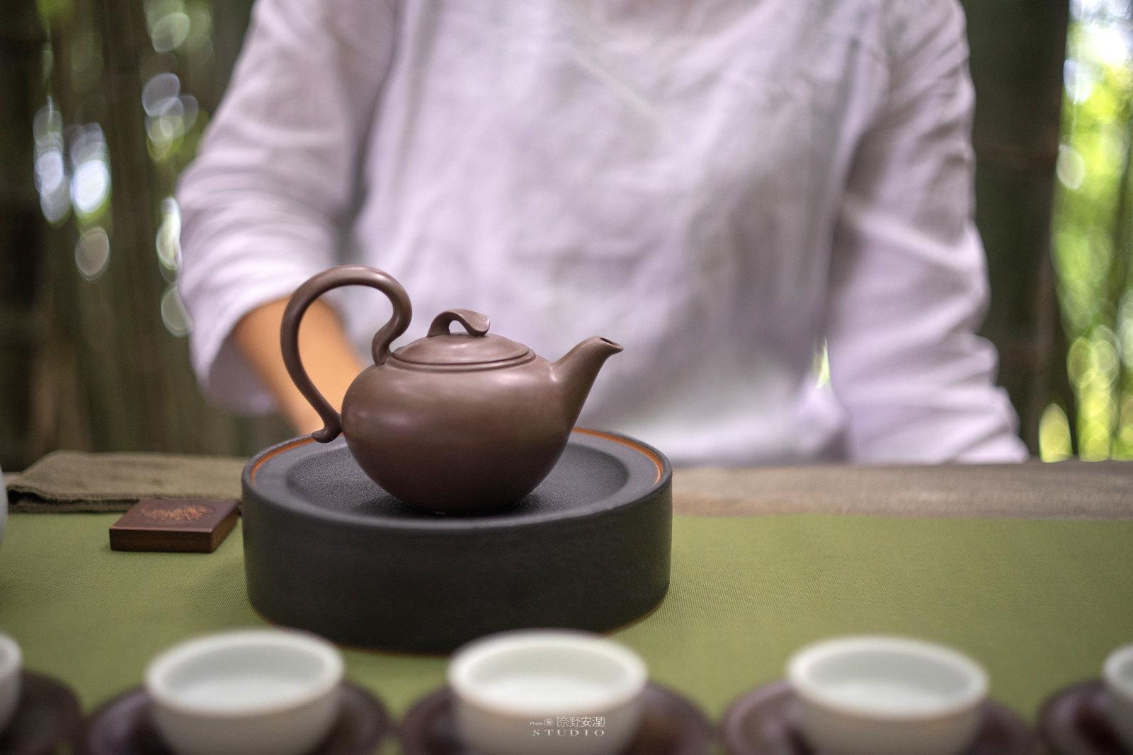 嘉義梅山當茶農,親子採茶一條龍 -13