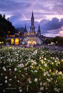 Sanctuaires Notre-Dame de Lourdes