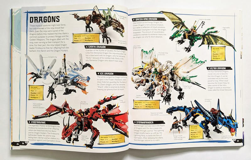 LEGO NINJAGO Visual Dictionary Book Review | BricksFanz