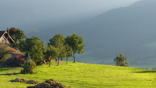 landscape oberbayern högl meadow evening hazeoverthevalley mountainfarm trees buldings chapel altweibersommer