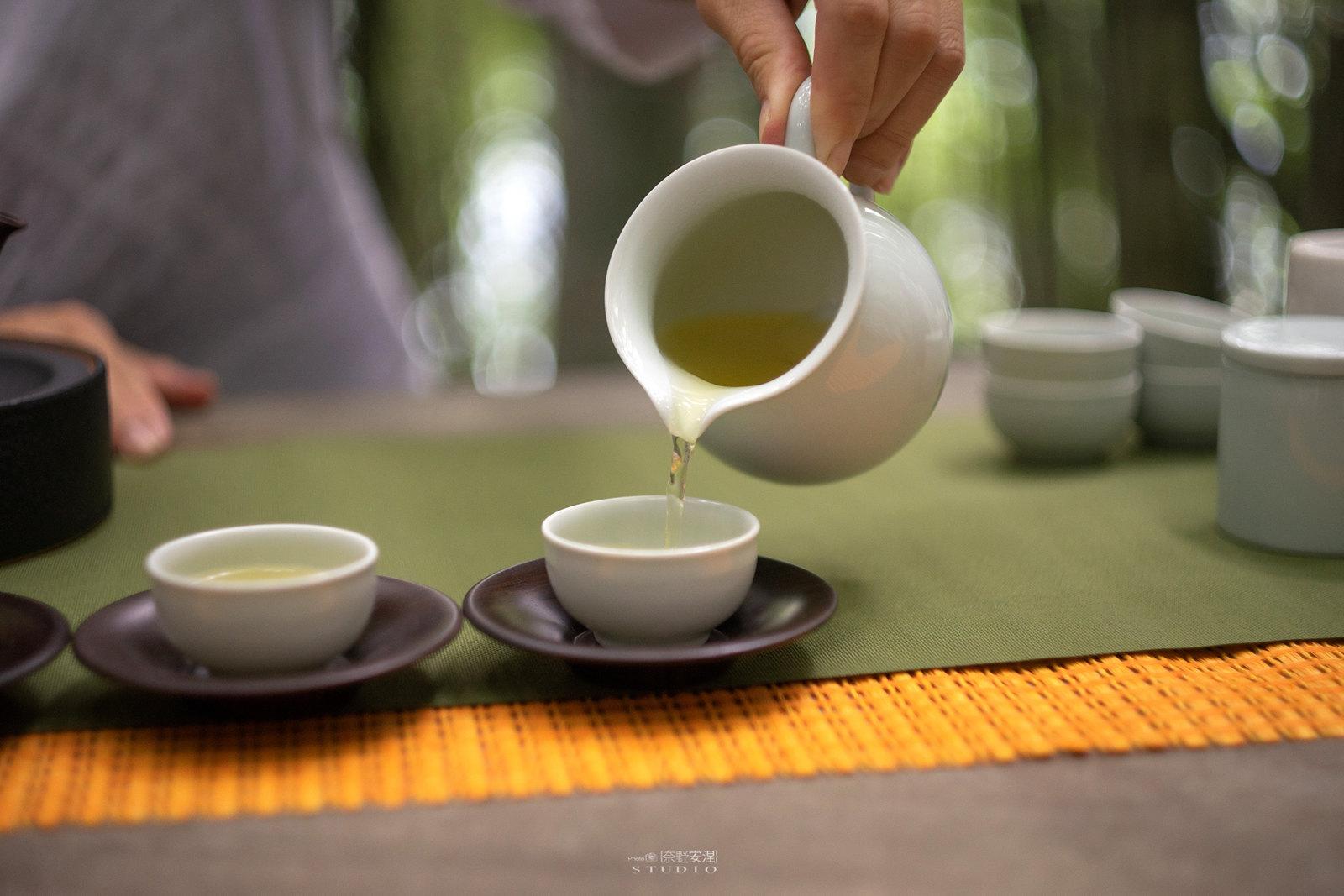 嘉義梅山當茶農,親子採茶一條龍 -15