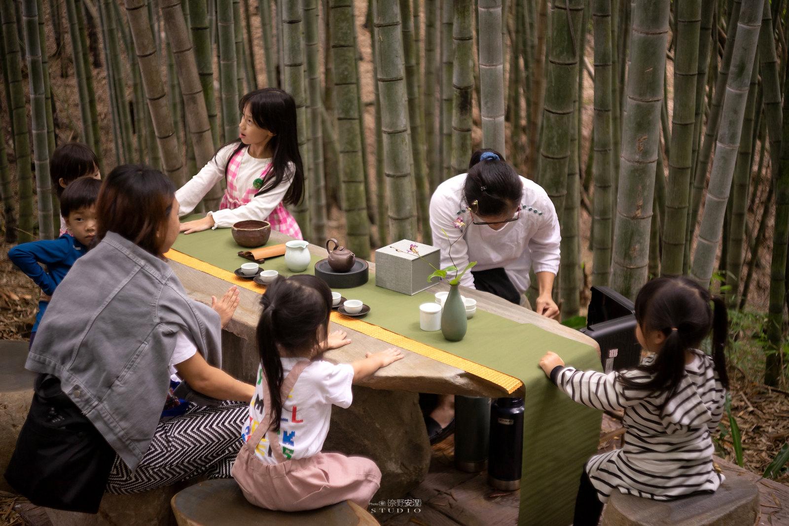 嘉義梅山當茶農,親子採茶一條龍 -11