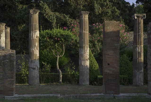 garden and ruins