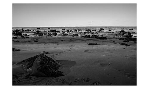 sigma dp1 quattro sigmadp1quattro caumsettstatehistoricparkpreserve marshallfieldestate longisland londislandsound viewtowardconnecticut bw bnw blackandwhite foveon digital beach