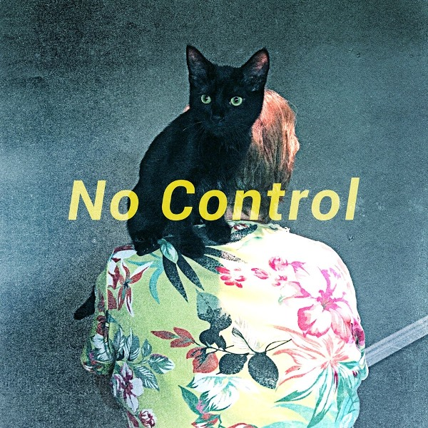 Wildlife - No Control