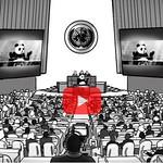 un panda all'ONU