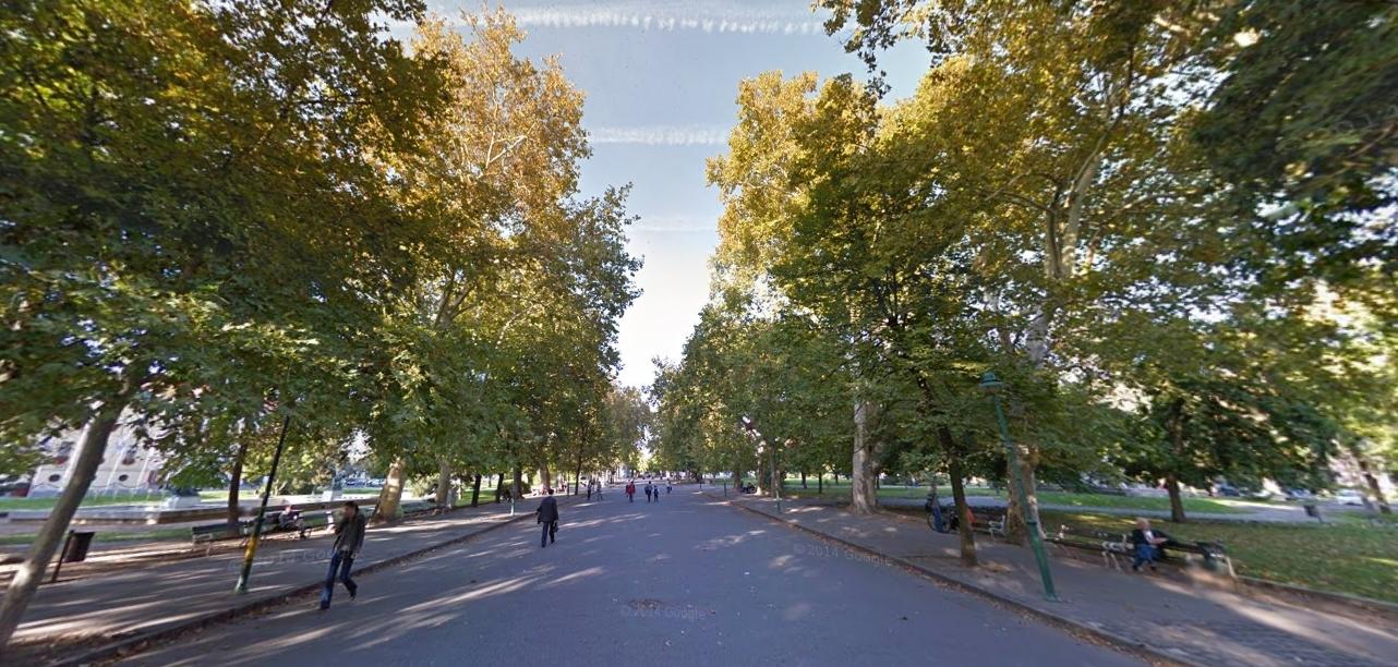 Tényleg kivágják a Széchenyi tér platánfáit?