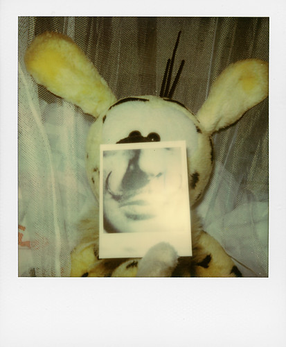 Marsupilami for Polaroid Festival