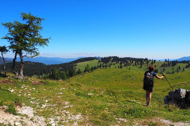 Simply enjoying the scenery, Slovenia
