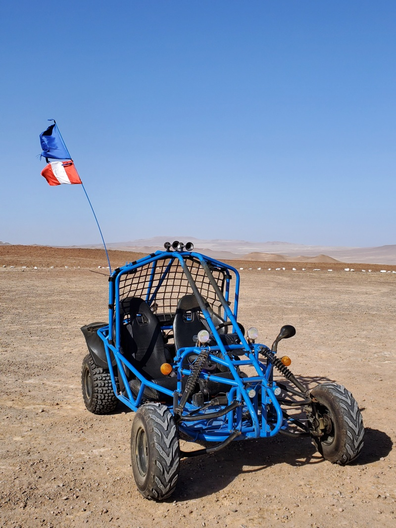 Paracas National Reserve mini buggy