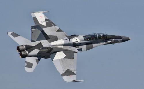 US NAVY F/A 18  Hornet, (Aggressor) NAS OCEANA Va (NTU/KNTU)  2019 Airshow