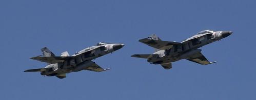 USN F/A 18 Hornet/Super Hornet Aggressors. NAS OCEANA 2019 Airshow.
