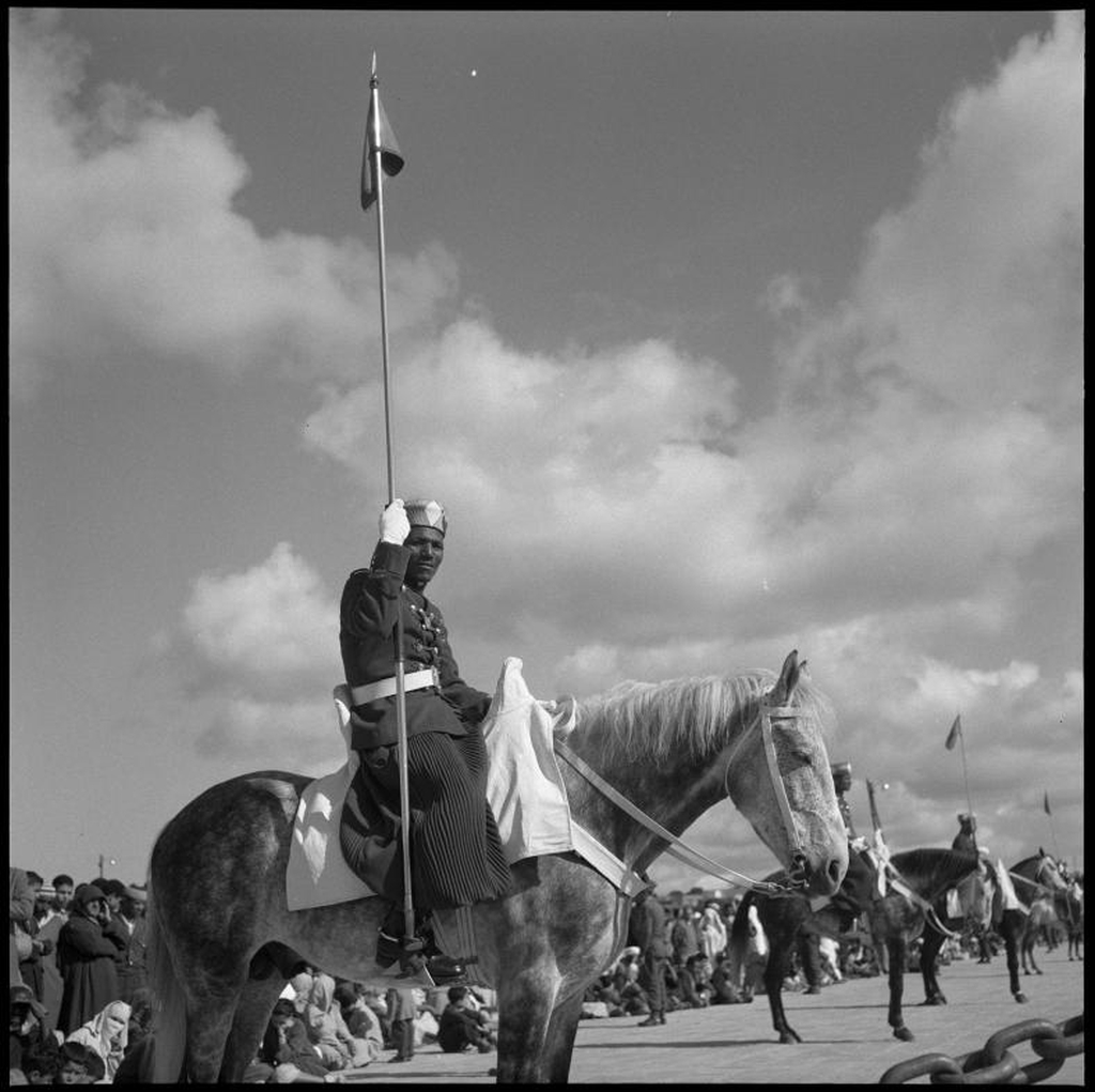 La Garde Royale Marocaine / Moroccan Royal Guard - Page 11 48790957883_d291e96098_o