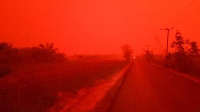照片轉載自BBC報導。印尼民眾Eka Wulandari 提供。