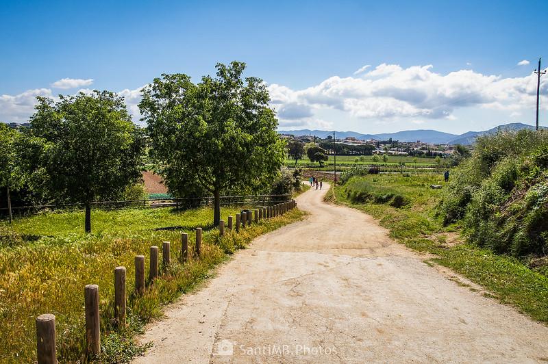 Camino de la Torre d'en Malla hacia Parets del Vallès