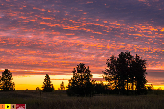 A Pacific Northwest Sweet Morning Crush: A Dramatic Sunrise (Part 116): Remembrance... (In Technicolor) - (Explored)