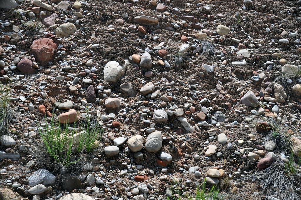Unlithified fluvial gravel (Dinosaur National Monument, Utah, USA) 2
