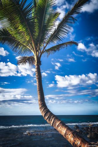 beach coast hawaii kenmickelphotography landscape maui ocean outdoors paia roadtohana shore sky photography water unitedstatesofamerica