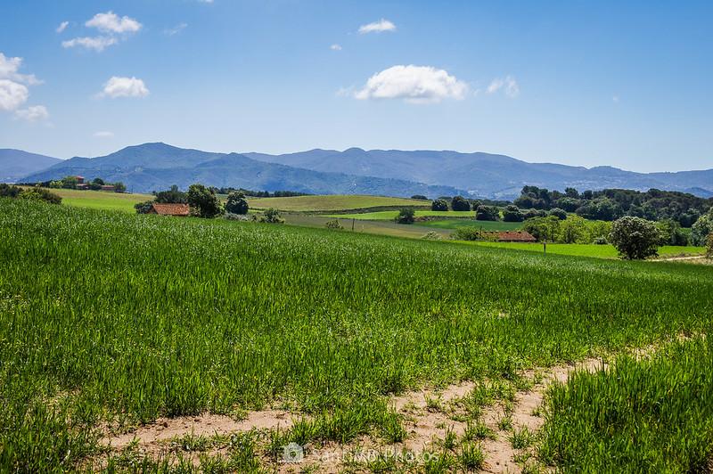 Paisaje de Gallecs desde el Bosc de Can Mulà