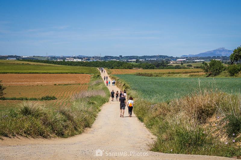 Camí de la Torre d'en Malla hacia Can Salvi