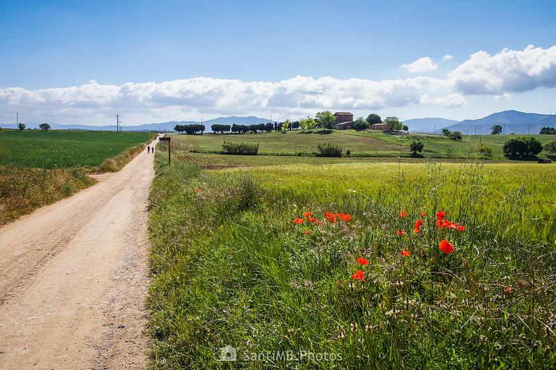 Camino de la Torre d'en Malla cerca de Can Cònsol
