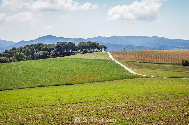 Vista de Gallecs y el Bosc de la Torre d'en Malla desde el Camí de Sant Valerià