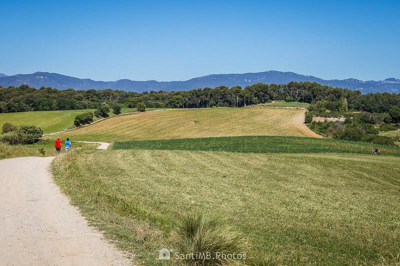 Camí de Sant Valerià hacia el Bosc de Can Veire
