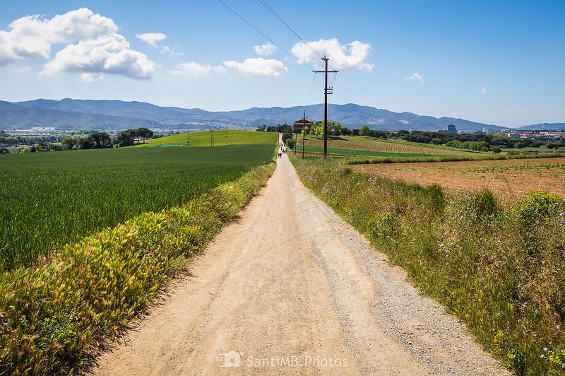 Camí de Sant Valerià desde el Bosc de la Torre d'en Malla
