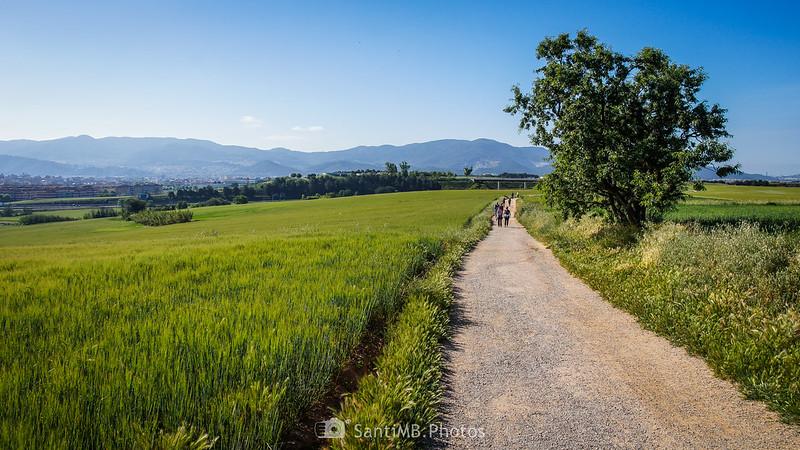 El Camí dels Bandolers de Gallecs con Mollet y la Serralada de Marina al fondo
