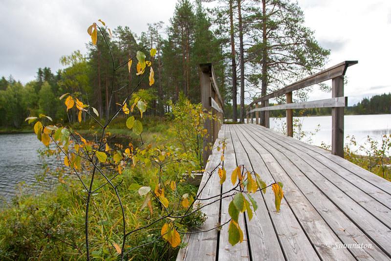Petkeljärvi (11)