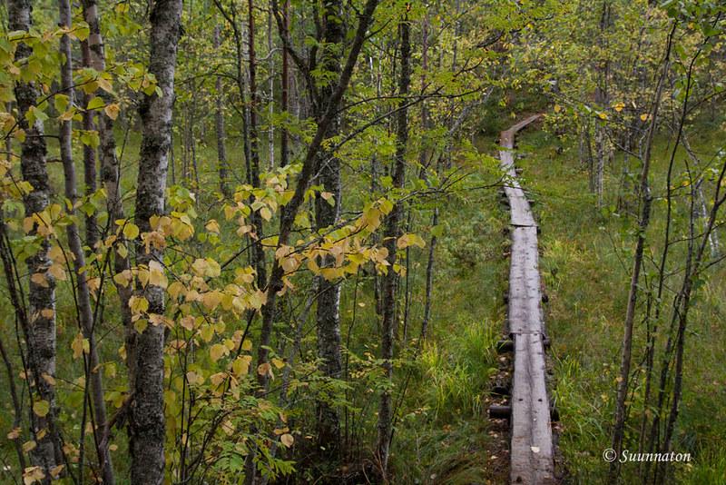 Petkeljärvi (15)