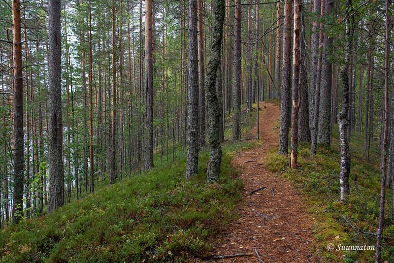 Petkeljärvi (13)