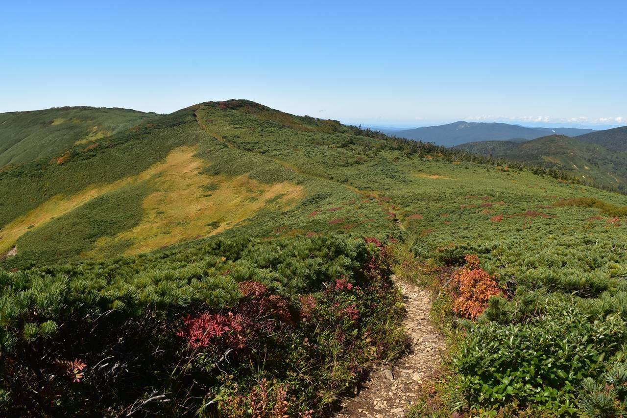 源太ヶ岳 稜線の登山道