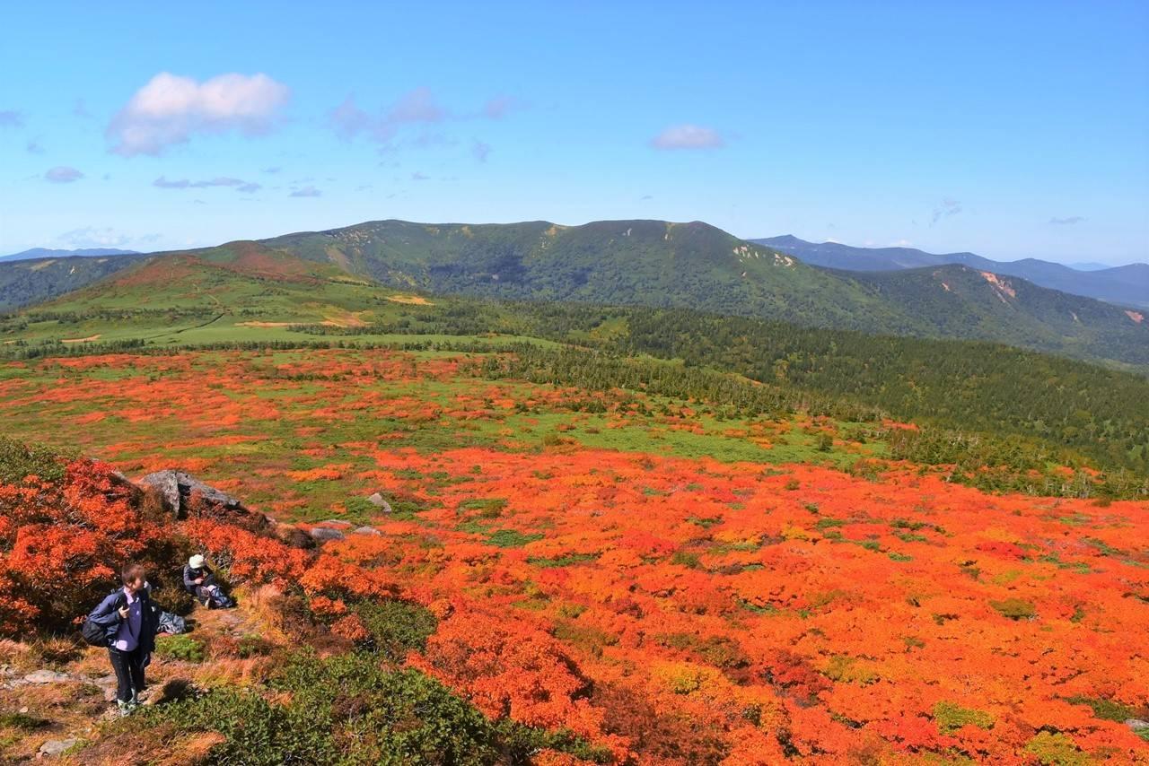 三ツ石山から望む裏岩手連峰縦走コースの稜線と紅葉