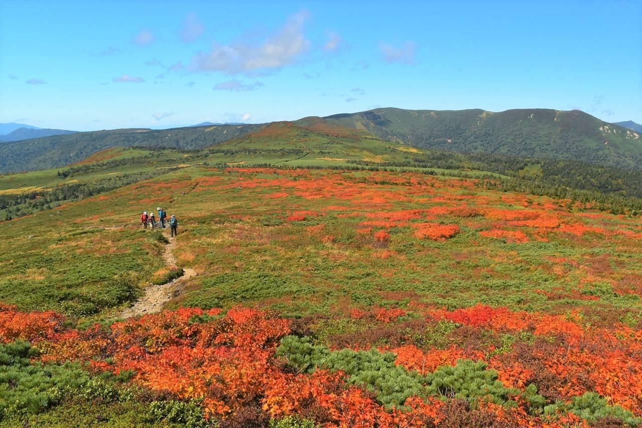 三ツ石山から源太ヶ岳方面の稜線と紅葉