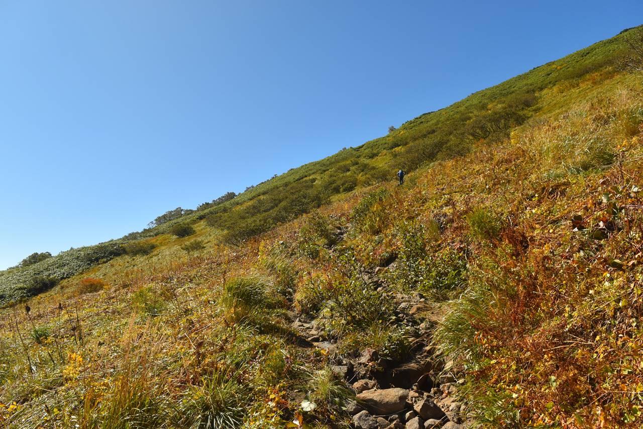 源太ヶ岳 展望の良い登山道