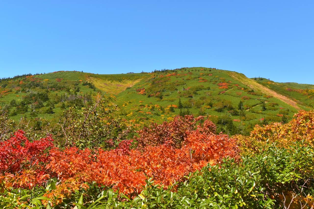 小畚山の紅葉と稜線