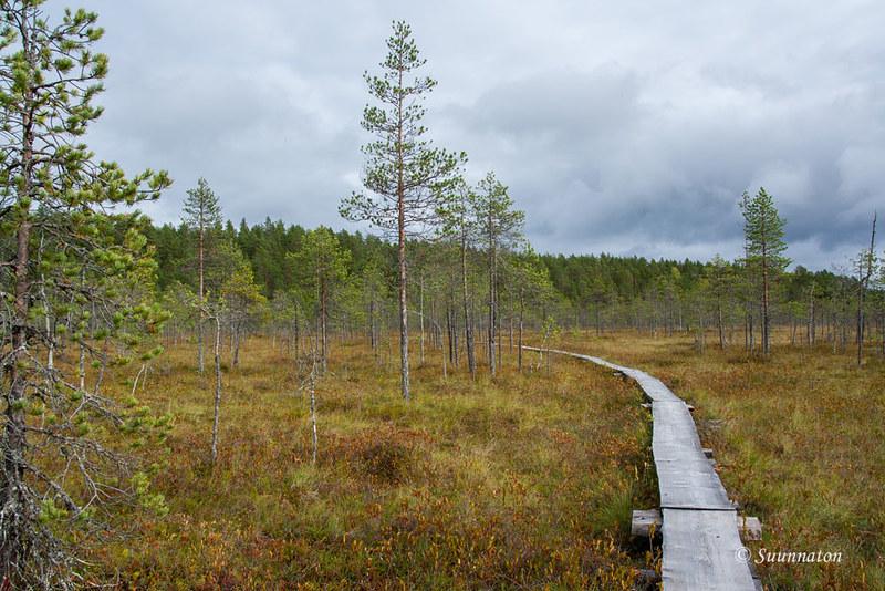 Petkeljärvi (21)
