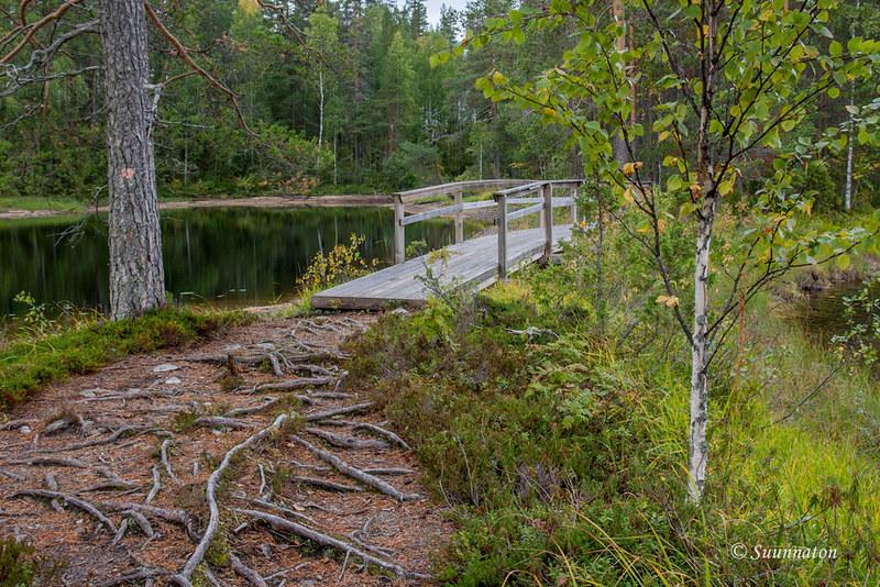 Petkeljärvi (10)