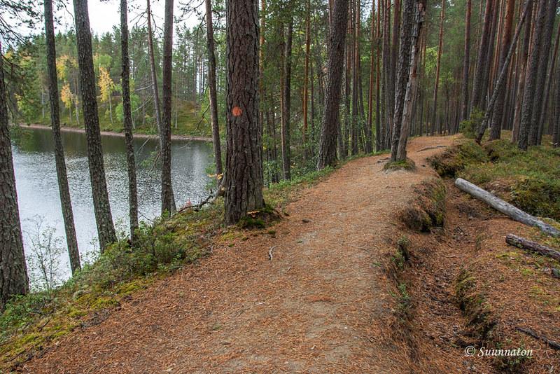 Petkeljärvi (4)